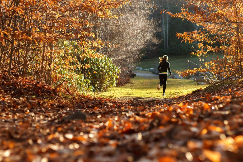 bieganie jesienią